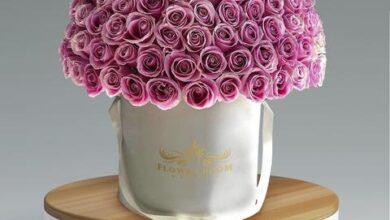 rosita roses